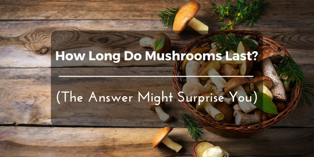 how-long-do-mushrooms- last