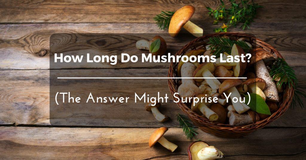 how-long-do-mushrooms- last