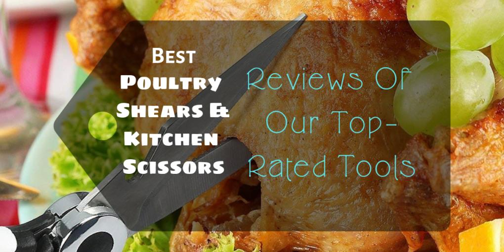 Best Poultry Shears & Kitchen Scissors