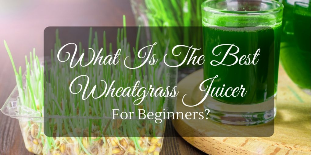 Vonshef Wheatgrass Slow Juicer Review : Wheatgrass Juicer. 9 Best Wheatgrass Juicers. Omega J8006 Masticating Juicer. Best Wheatgrass ...