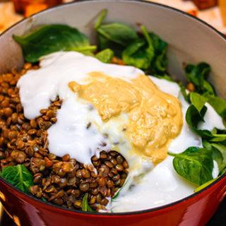 Lentil Protein Salad Recipe